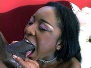 Black whore Amile Waters