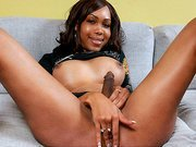Beautiful black tgirl
