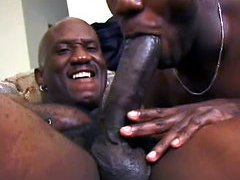 Two black studs hard fuckung