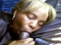 Wife sucks husband's cock in the bus